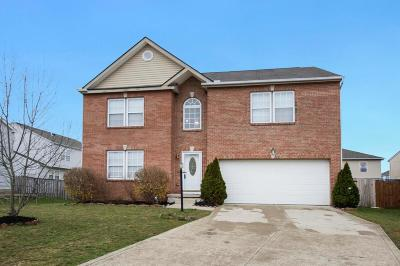 Blacklick Single Family Home Contingent Finance And Inspect: 1100 Ring Neck Drive