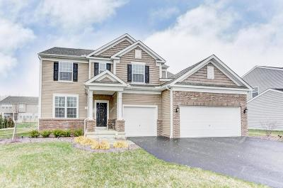 Marysville Single Family Home Contingent Finance And Inspect: 696 Arabian Circle