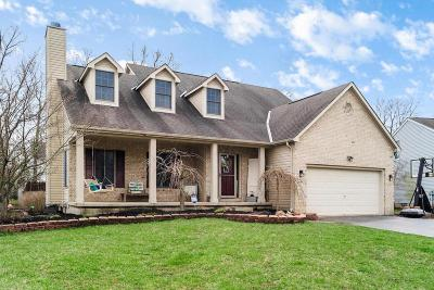 Grove City Single Family Home Contingent Finance And Inspect: 695 Hennigans Grove Road