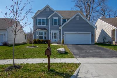 Blacklick Single Family Home Contingent Finance And Inspect: 7840 Blacklick View Drive