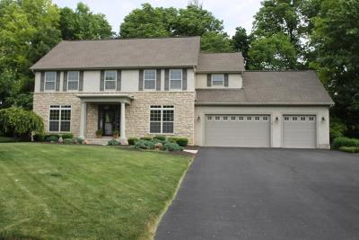 Westerville Single Family Home For Sale: 7293 Hawksbeard Drive