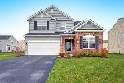 Union County Single Family Home For Sale: 491 Harness Place