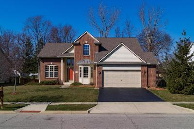 Grove City Single Family Home For Sale: 4798 Adwell Loop