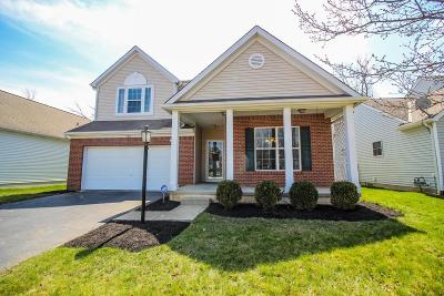 Blacklick Single Family Home Contingent Finance And Inspect: 7977 Headwater Drive