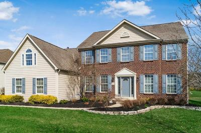 Dublin Single Family Home Contingent Finance And Inspect: 6282 Belvedere Green Boulevard