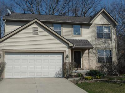 Blacklick Single Family Home Contingent Finance And Inspect: 358 Windsome Drive