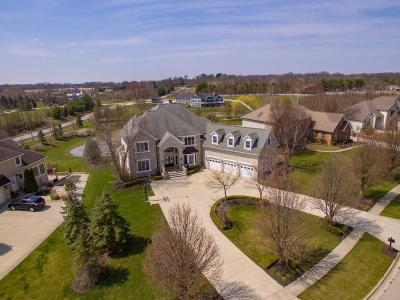 Pickerington Single Family Home Contingent Finance And Inspect: 13555 Violet Meadows Boulevard