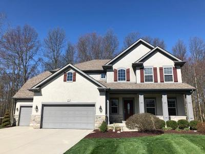 Blacklick Single Family Home For Sale: 937 Suzanne Way