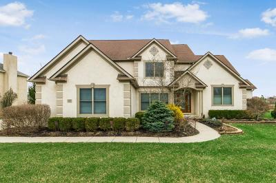 Pickerington Single Family Home Contingent Finance And Inspect: 13658 Violet Meadows Boulevard