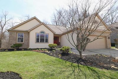 Blacklick Single Family Home Contingent Finance And Inspect: 200 Kingsmeadow Lane