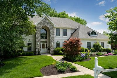 Dublin  Single Family Home For Sale: 8692 Tartan Fields Drive