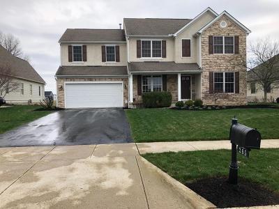 Delaware Single Family Home For Sale: 265 Tara Glen Drive
