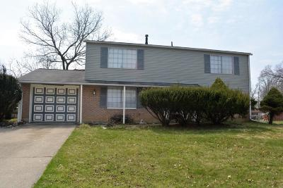 Westerville Single Family Home For Sale: 3425 Saigon Drive