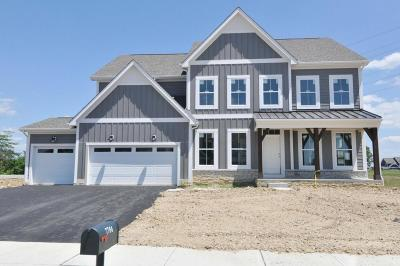 Powell Single Family Home For Sale: 7764 Bachman Drive #Lot 3627
