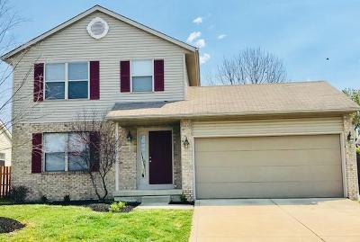 Hilliard Single Family Home For Sale: 2974 Brookwell Drive