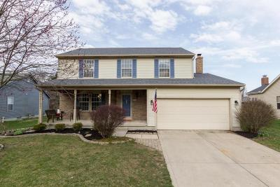 Grove City Single Family Home For Sale: 3397 Marshrun Drive