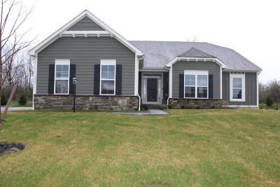 Powell Single Family Home For Sale: 2687 Derby Drive