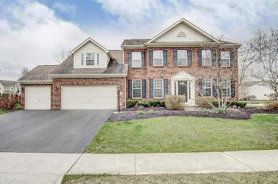 Powell Single Family Home For Sale: 7690 High Wind Drive