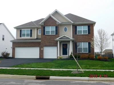 Pickerington Single Family Home For Sale: 120 Balsam Drive