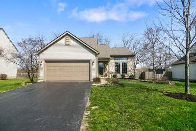Grove City Single Family Home Contingent Finance And Inspect: 6373 Ewen Circle