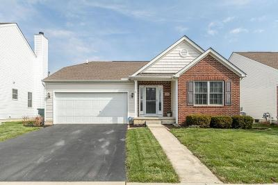 Westerville Single Family Home For Sale: 5902 Wyndale Drive