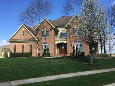 Pickerington Single Family Home For Sale: 7090 Drucilla Street