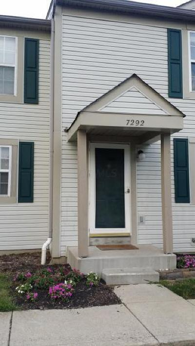Blacklick Condo For Sale: 7292 Kirkdale Drive #19B