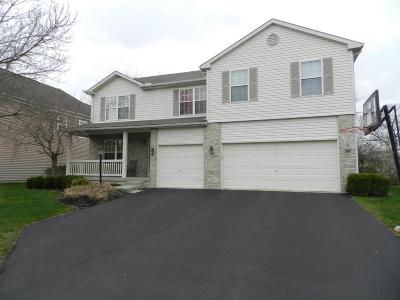 Pickerington Single Family Home For Sale: 135 Leasure Drive