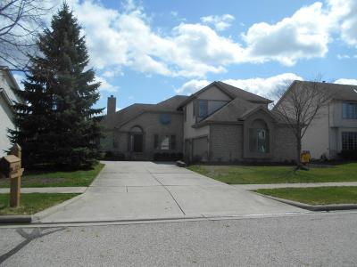 Dublin OH Single Family Home For Sale: $449,900