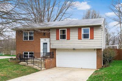 Union County Single Family Home Contingent Finance And Inspect: 546 Wagonwheel Lane