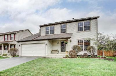Hilliard Single Family Home For Sale: 2822 Pheasant Field Drive