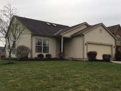 Hilliard Single Family Home For Sale: 5471 Pearson Court