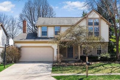 Westerville Single Family Home For Sale: 8100 Treebrook Lane