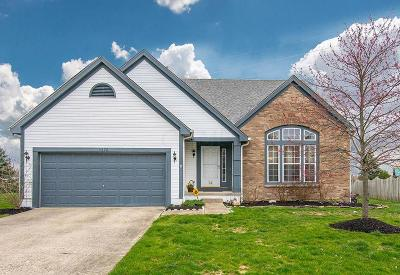 Hilliard Single Family Home For Sale: 3272 Tollcross Drive