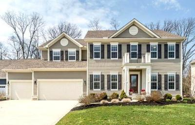 Blacklick Single Family Home For Sale: 1023 Heritage Street