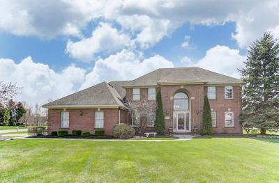 Westerville Single Family Home For Sale: 5800 Medallion Drive E
