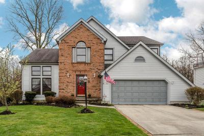 Hilliard Single Family Home For Sale: 3455 Scioto Run Boulevard