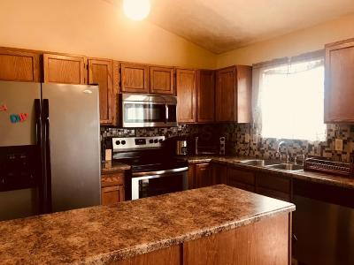 Columbus Single Family Home For Sale: 3239 Payday Lane Drive