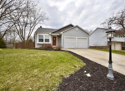 Grove City Single Family Home For Sale: 4251 Kelnor Drive