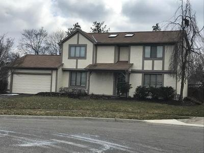 Grove City Single Family Home For Sale: 1649 Cayuga Court