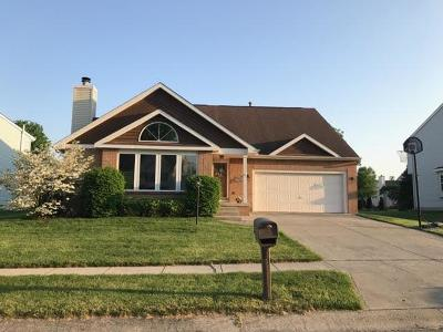 Pickerington Single Family Home For Sale: 393 Rambling Brook Drive