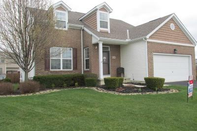 Single Family Home For Sale: 260 Whitewater Court