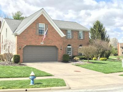 Hilliard Single Family Home For Sale: 3324 River Narrows Road