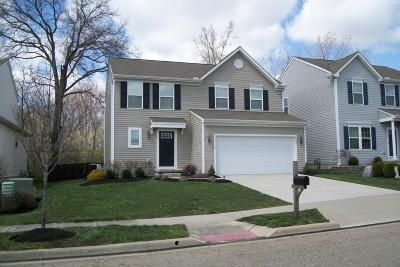 Blacklick Single Family Home For Sale: 6966 Shady Rock Lane