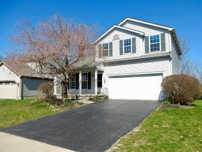 Hilliard Single Family Home For Sale: 3280 Andrew James Drive