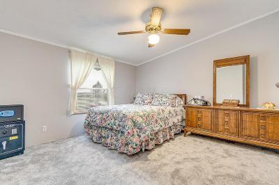 Johnstown Single Family Home For Sale: 6648 Benner Road