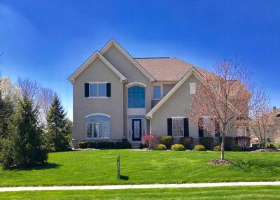 Lewis Center Single Family Home For Sale: 3438 Abbey Knoll Drive