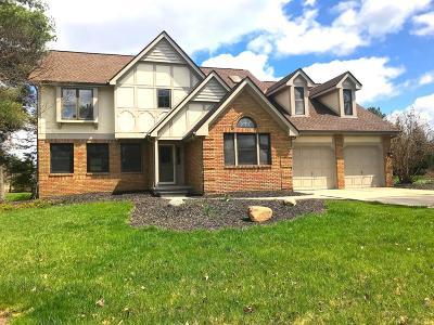 Dublin Single Family Home For Sale: 8950 Locherbie Court