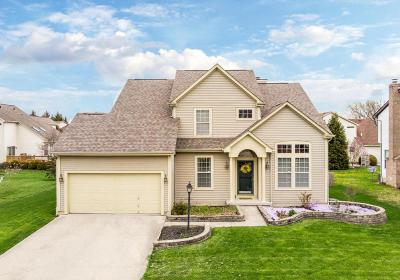 Pickerington Single Family Home For Sale: 612 Montmorency Drive S