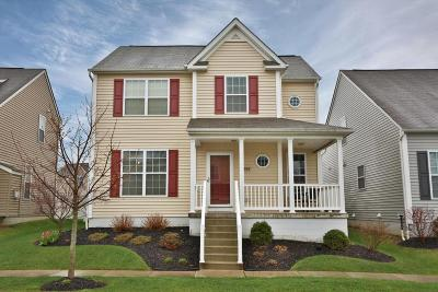 Blacklick Single Family Home For Sale: 7869 Waggoner Trace Drive